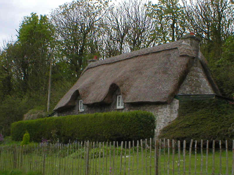Thatched Cottage at Dunraven Bay